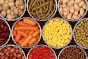 افزودنی های غذایی پویا ویژن