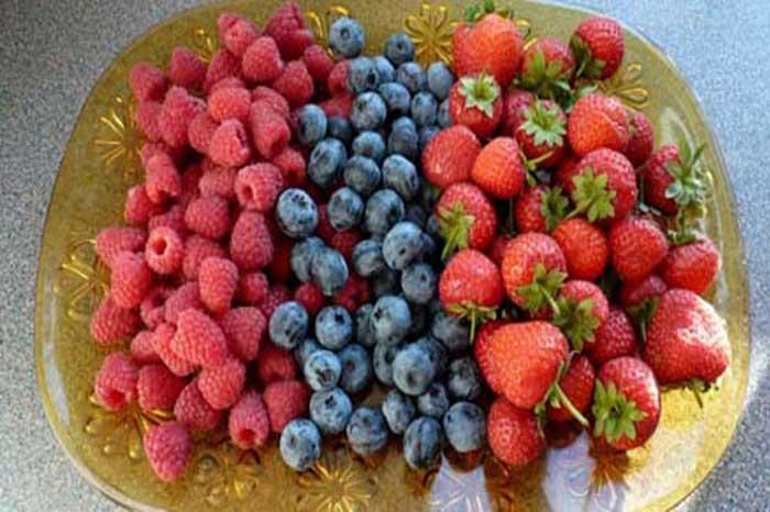 اسید سیتریک در میوه ها
