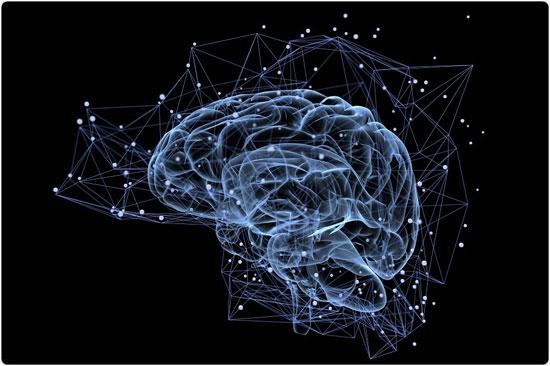 آیا لسیتین باعث افزایش حافظه می شود؟