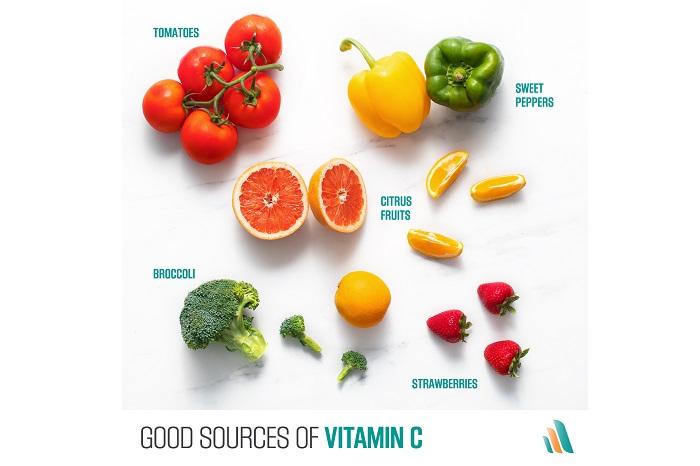 اسید اسکوربیک یک تعدیل کننده مهم تمایز استخوانی و کندروژنیک است