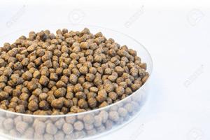 از لسیتین در خوراک آبزیان استفاده می شود