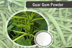 گوارگام یک استابلایزر گیاهی