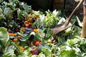 چگونه از ضایعات کشاورزی اسید سیتریک تولید می شود