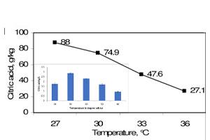 دمای تولیدی اسید سیتریک چه میزان است؟