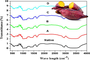 نشاسته سیب زمینی شیرین با استفاده از اسید سیتریک با غلظت های مختلف (1 و 5 درصد) و دوره های زمانی (1 و 11 ساعت) در دمای 45 درجه سانتی گراد هیدرولیز شد و بر اساس