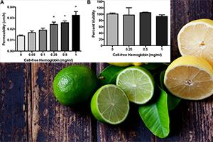 اسید اسکوربیک باعث کاهش نفوذ پذیری اندوتلیال شده توسط هموگلوبین سلولی می شود