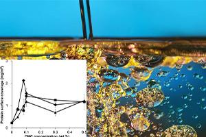 عملکرد همزیستی لسیتین و گلیسرول مونو استارات در امولسیون های روغن / آب