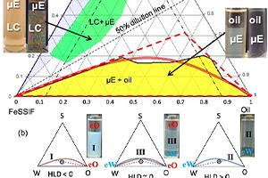 پیش بینی ویژگی های حلال سازی دیاگرام فاز سه تایی از میکرو امولسیون لسیتین